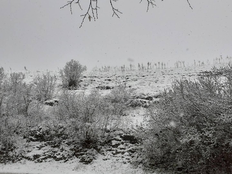 Un paysage enneigé dans le haut-pays.