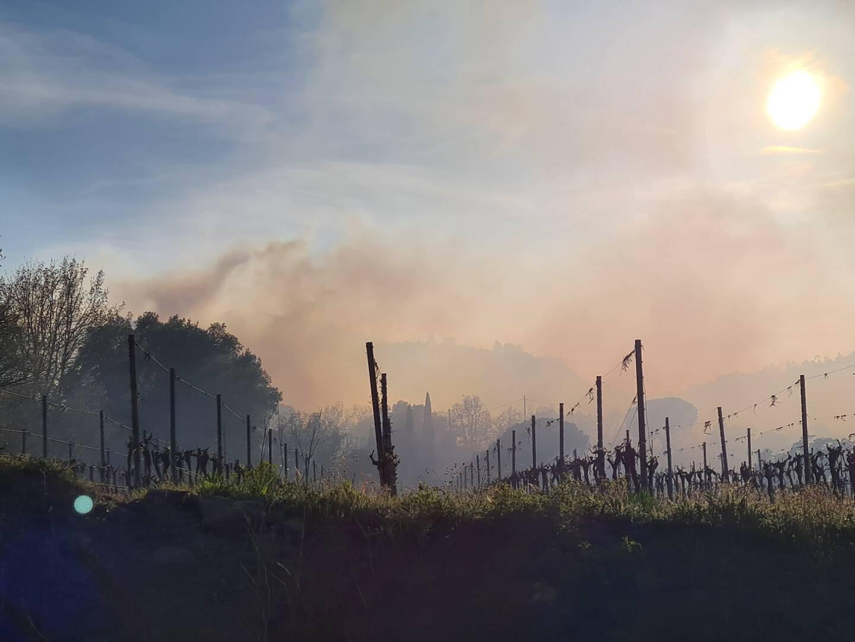 Le feu a généré un important dégagement de fumée.