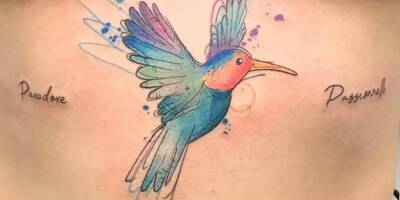 """""""Des styles ne pourront pas se faire sans couleur"""": l'inquiétude des tatoueurs face aux nouvelles mesures européennes interdisant certains pigments"""