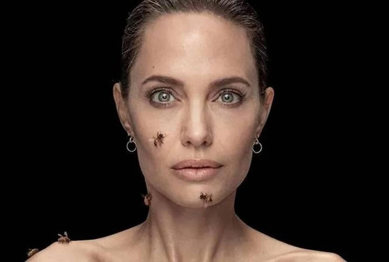 Angelina Jolie a accepté de prêter son image à la campagne de communication.
