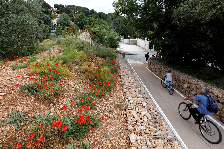 Coquelicots, arbres fruitiers et revêtement anti-dérapage pour promeneurs et vélos: le tronçon 5 de la promenade verte des Pourdrières est déjà emprunté.