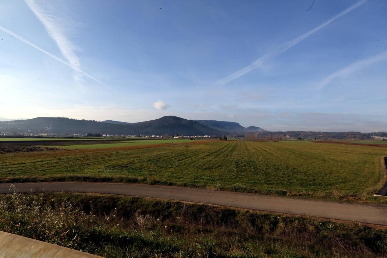 """A l'image de La plaine de Saint-Maximin, il est prévu de créer ces prochaines années dix nouvelles """"zones agricoles protégées"""" (il en existe six à ce jour) en Provence verte."""