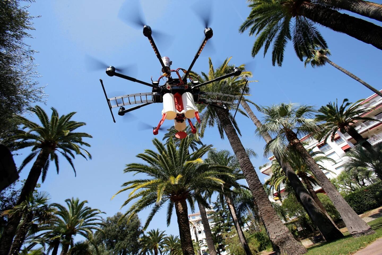 Une « drone » de machine s'attaque, elle aussi, aux charançons.