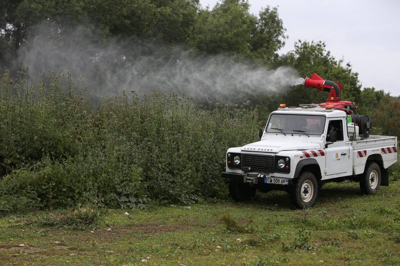 Le service démoustication de la commune a déjà procédé au traitement de 120 hectares depuis la mi-fevrier.
