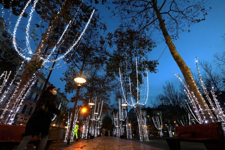 Les arbres du centre-ville d'Antibes s'illuminent