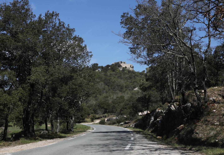 Le site du Défens à Forcalqueiret, derrière La Verrerie, à Rocbaron : c'est là qu'était envisagé le projet de parc photovoltaïque.