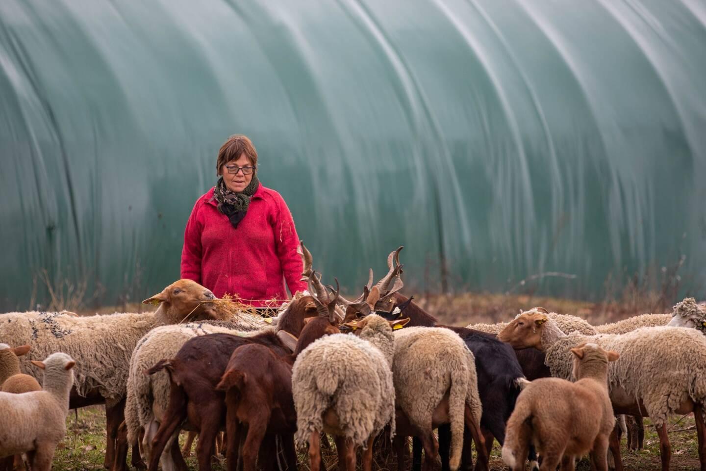 Patricia Lopez est installée à la bergerie de La Roque depuis 1986.