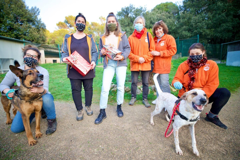 L'équipe du refuge de Flayosc mobilisé pendant les fêtes pour conseiller les futurs propriétaires. Un mot d'ordre : les animaux ne sont pas des peluches