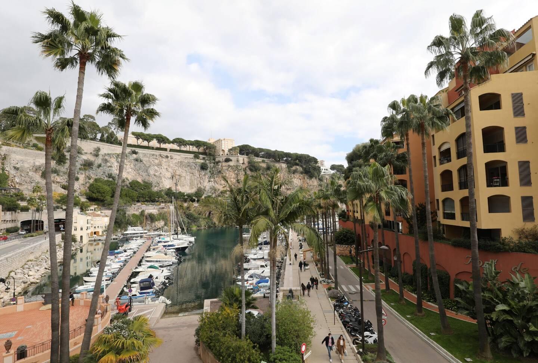 C'est à Fontvieille, dès le lundi 8 mars, que les premiers palmiers seront traités.