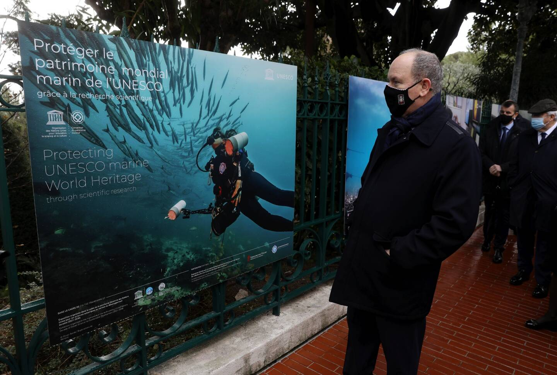 L'exposition, inaugurée ce mercredi par le prince Albert II, illustre la beauté de paysages marins exceptionnels et montre comment la recherche participe à leur conservation.