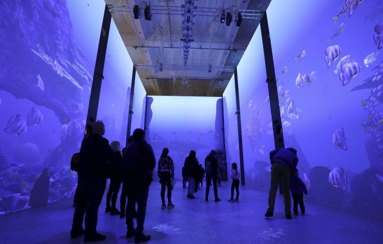 En immersion dans un immense espace d'écrans interactifs.