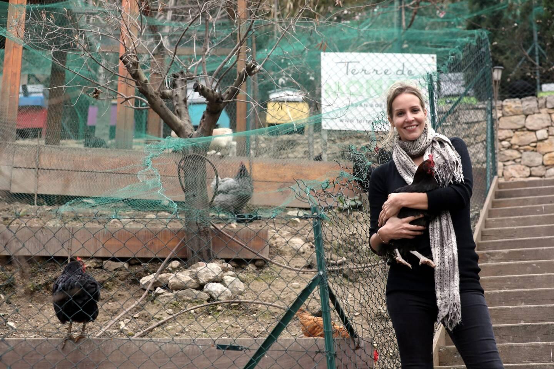 Une soixantaine de poules cohabitent au pied de la tour.
