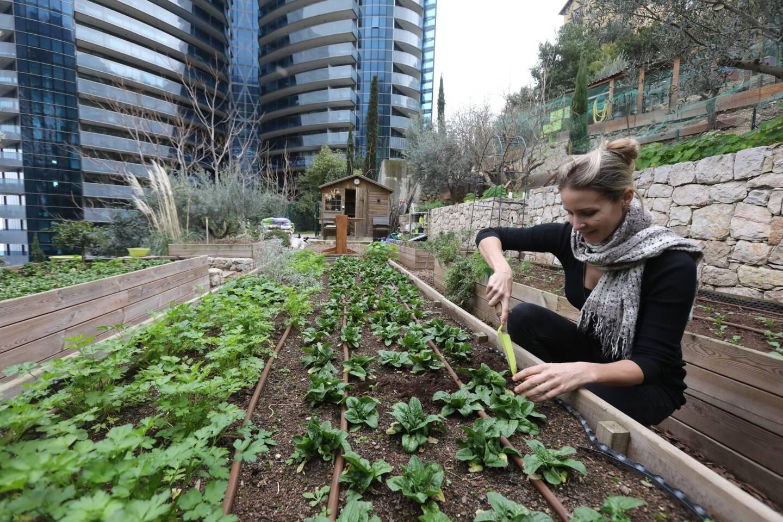 Dans les travées de sa ferme urbaine au pied de la tour Odéon, Jessica Sbaraglia fait germer en cette saison pousses d'épinards et plantes aromatiques pour les résidents de l'immeuble.