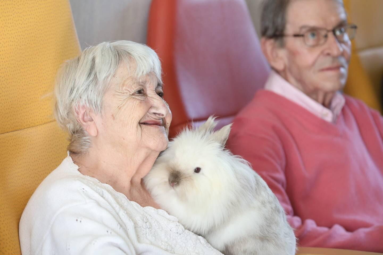 A  l'Hermitage, le contact des résidents avec les animaux s'avère bénéfique