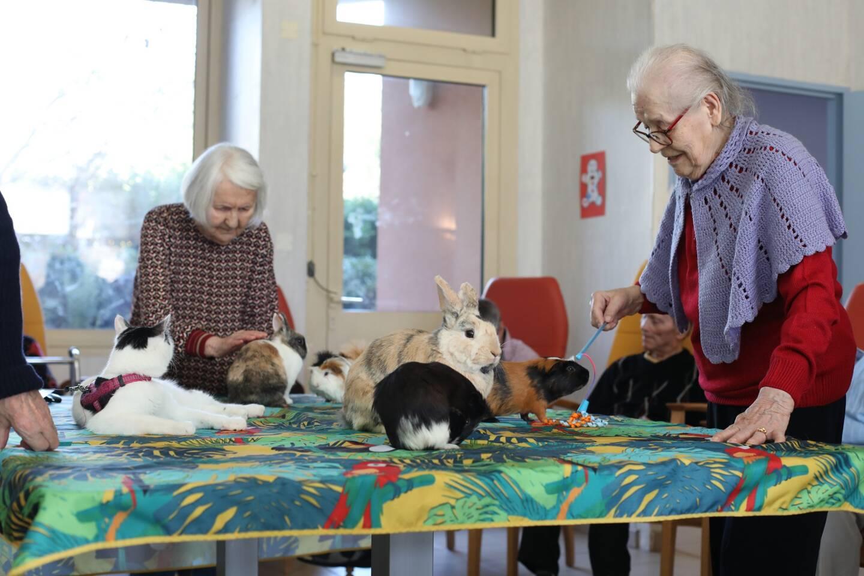 Lidia a pris un grand plaisir à jouer avec les cochons d'Inde. Ci-dessous, Francisca, la doyenne de l'Hermitage a 109 ans.