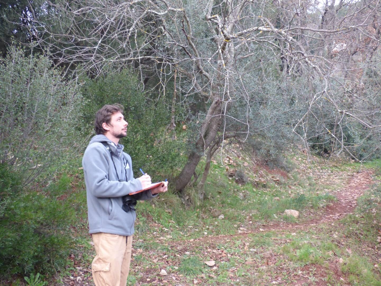 Vincent Mariani effectuant un comptage en pleine nature pour le Conservatoire des espaces naturels de Provence-Alpes-Côte d'Azur.