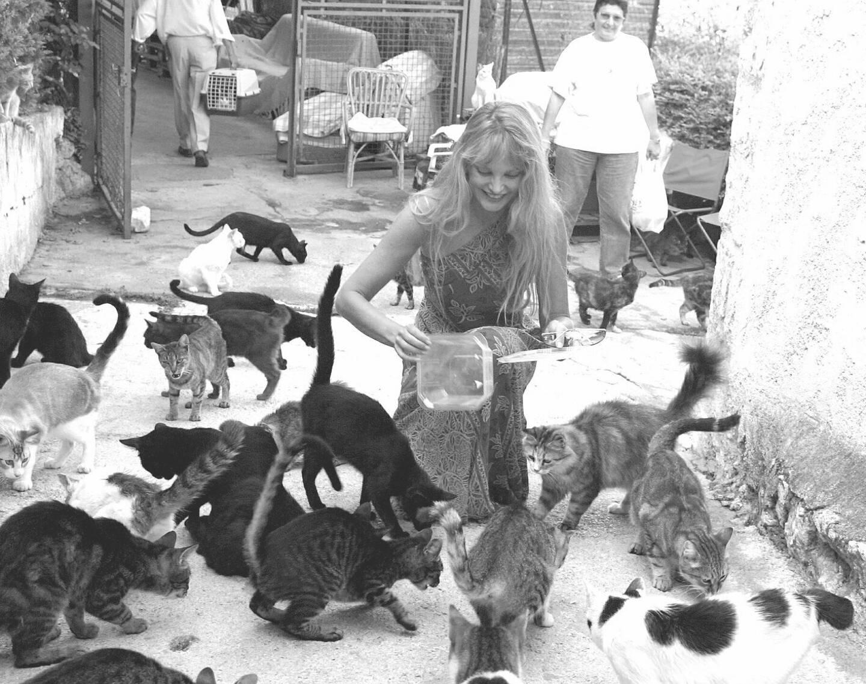 En 2001, marraine des Chats de Stella, Arielle Dombasle s'était prêtée à la photo souvenir.