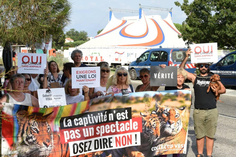 En 2019, manifestation devant un cirque faisant une halte dans le Var.