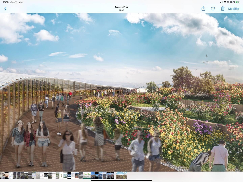 """La future """"Allée des fleurs""""; Le nouveau projet prévoit aussi jardins, potager, vignes..."""