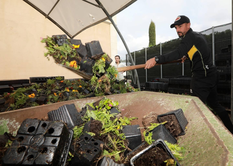 Les producteurs - ici l'entreprise Dynavert - ont jeté en mars 2020 des millions de plantes en pot et de fleurs coupées, invendables à cause du premier confinement.
