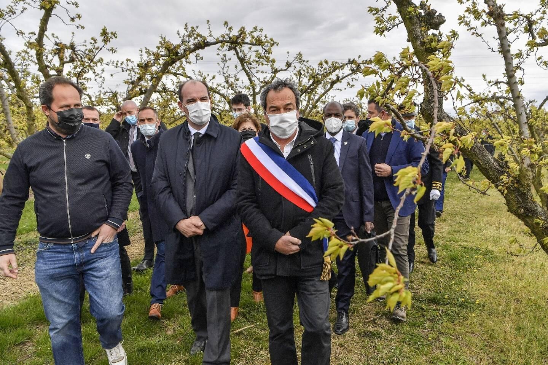 """Gel: Castex promet """"des enveloppes exceptionnelles"""" à l'agriculture, le  Fonds des calamités """"déplafonné"""" - Nice-Matin"""