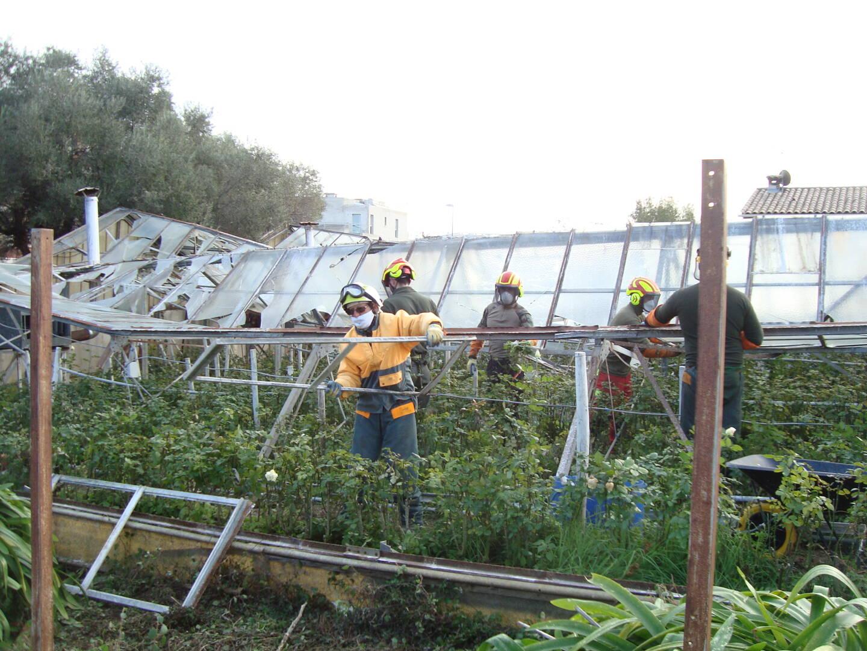 Les sapeurs-forestiers de Force 06, enlèvent les verres cassés de l'exploitation horticole