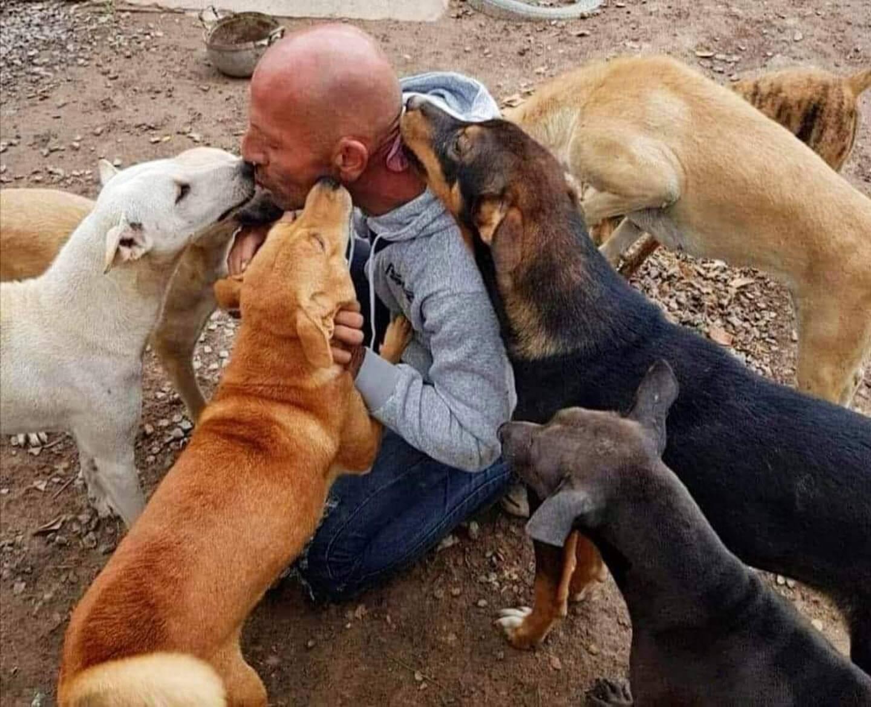 Michael Chour considère les chiens dont ils s'occupent comme ses bébés.