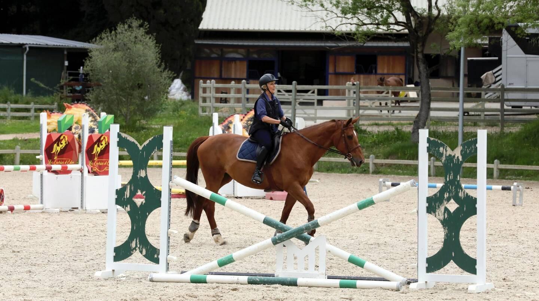 Les Ecurie d'Eden sont spécialisés dans l'entraînement des chevaux au saut d'obstacle.