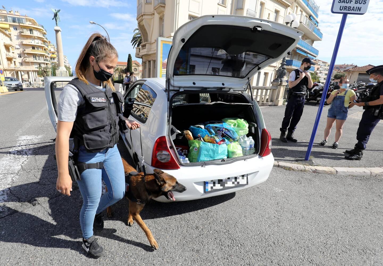 Plusieurs véhicules ont aussi été contrôlés, avec l'aide des chiens de recherche de l'unité cynophile de la DDSP06.