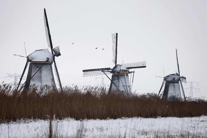 Des moulins à vent sous la neige dans le village de Kinderdijk (Pays-Bas), le 7 février 2021