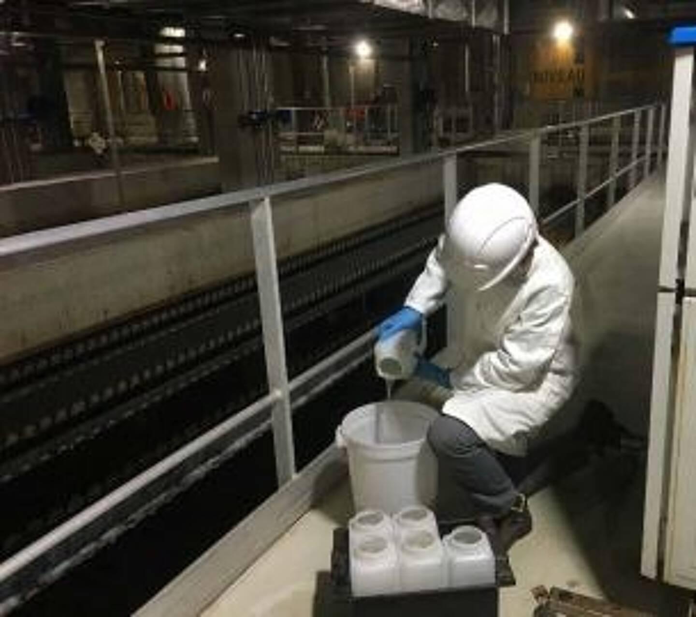 Depuis six semaines, et à raison de deux fois par semaine, des prélèvements sont programmés dans les stations d'épuration de la Métropole, Amphitria, Amphora et l'Almanarre.