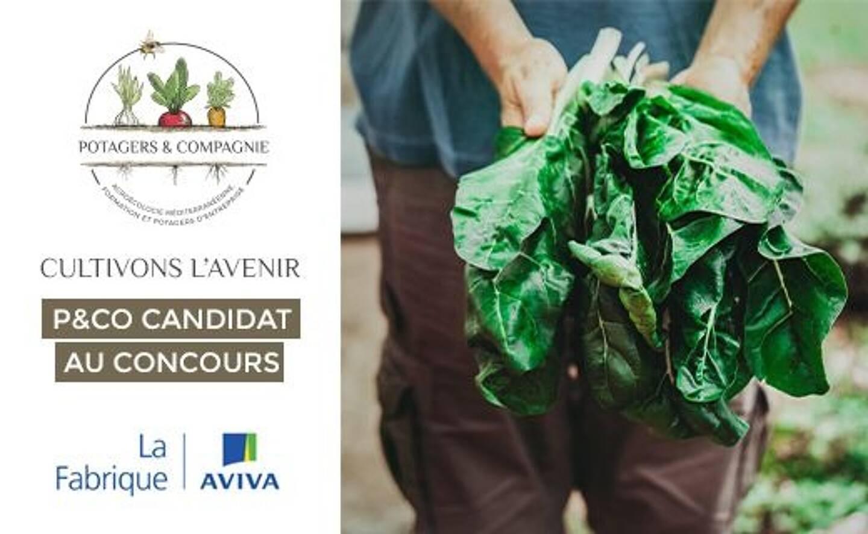 Découvrez Potagers & Compagnie au Val ou comment  cultiver autrement des potagers en entreprise au profit de l'ensemble des collaborateurs.
