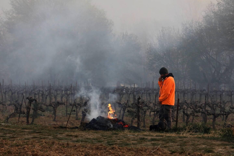 Comme une quarantaine de coopérateurs et propriétaires de domaine corrensois, Fabien Mistre, président des Vignerons de Correns, a alimenté toute la nuit un feu de paille.
