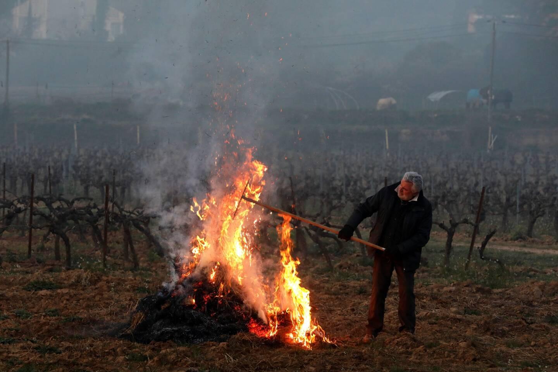 Gel dans les vignes à Correns.