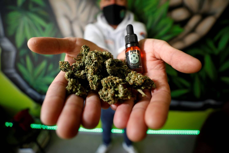 """Les magasins vendant du CBD (Cannabis Légal) fleurissent un peu partout en France, ici à Cannes au """"CBD shop""""."""