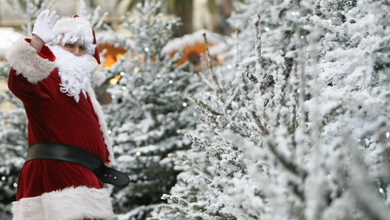 Y aura-t-il de la neige à Noël dans le Var? Le point sur les dernières prévisions de Météo-France.
