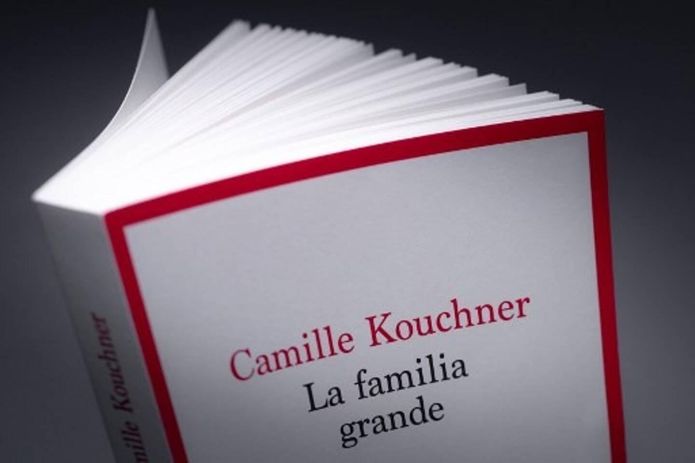 """""""Familia Grande"""", le livre de Camille Kouchner. Accusé d'inceste sur l'un de ses beaux-fils dans ce livre paru le 07 janvier 2021, le célèbre politologue français Olivier Duhamel a annoncé le 4 janvier qu'il mettrait fin à toutes ses fonctions, dont celle de président de la National Political Science Fondation (FNSP)."""