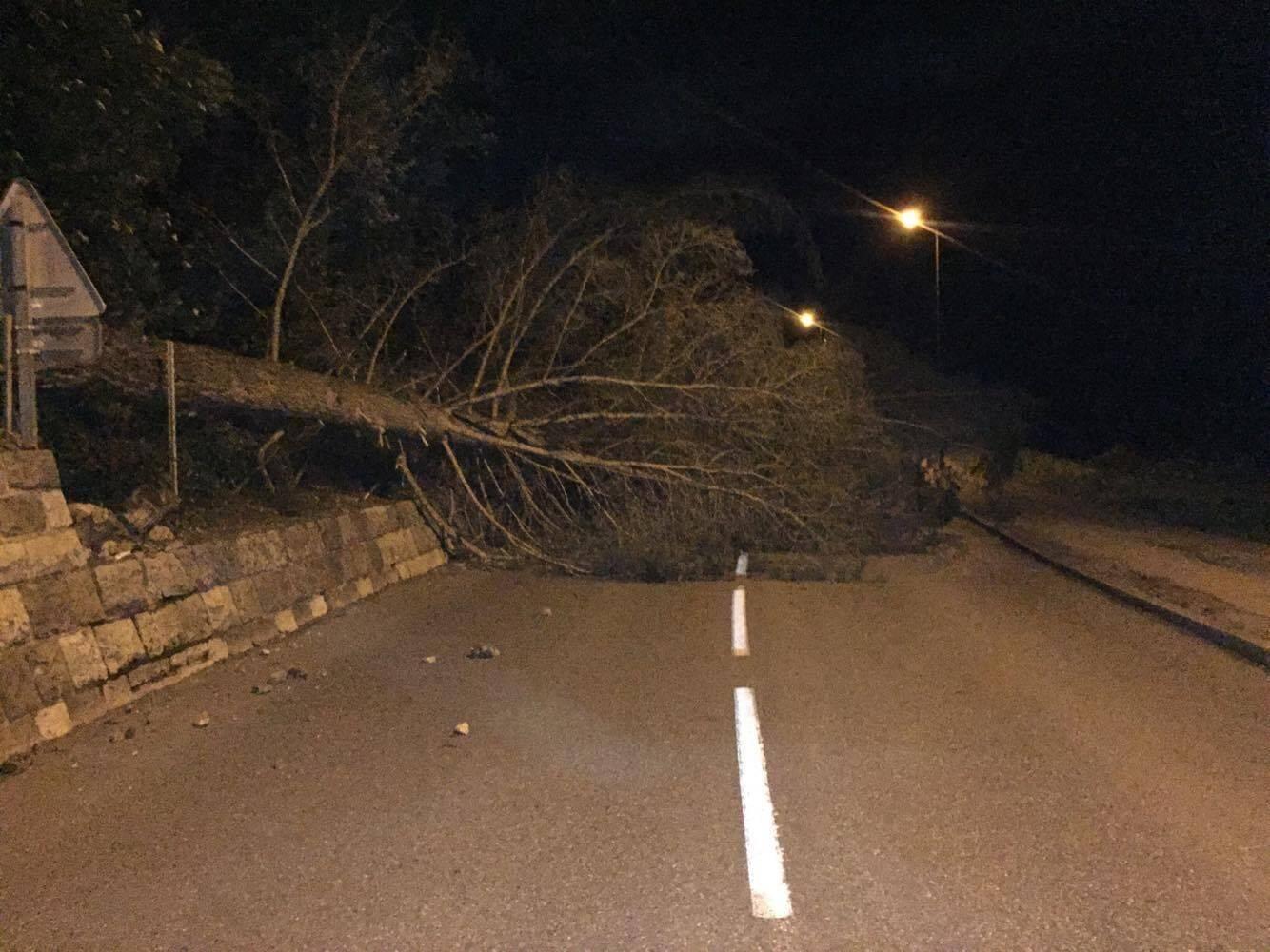 Un arbres tombé sur la route à Cabris