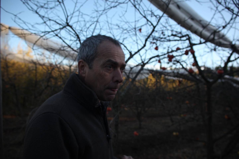 Pierre Venel a équipé tous ses pommiers et pêchers de filets de protection.