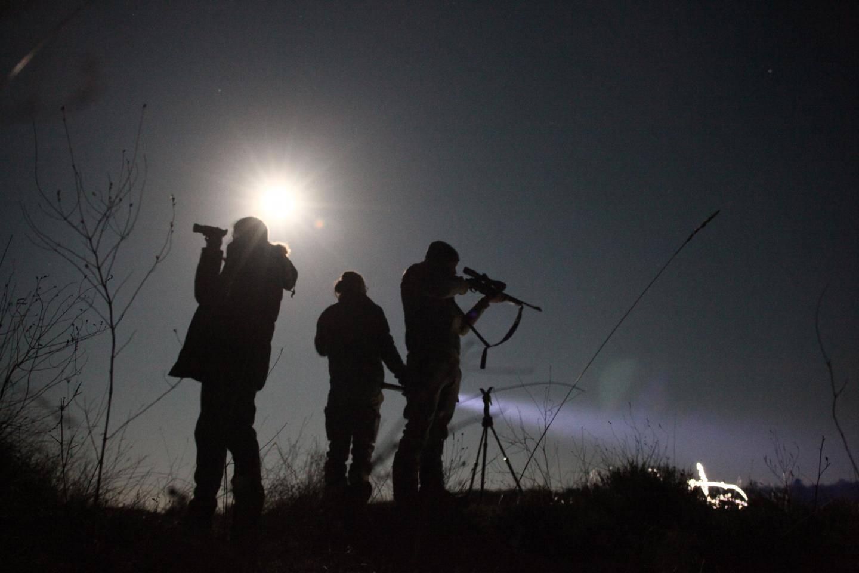 """La Brigade vient d'être récemment dotée de fusils équipés de lunettes thermiques qui permettent de """"tirer sans éclairer même si la loi nous impose avant tout tir de procéder à un éclairage pour identifier l'animal."""""""