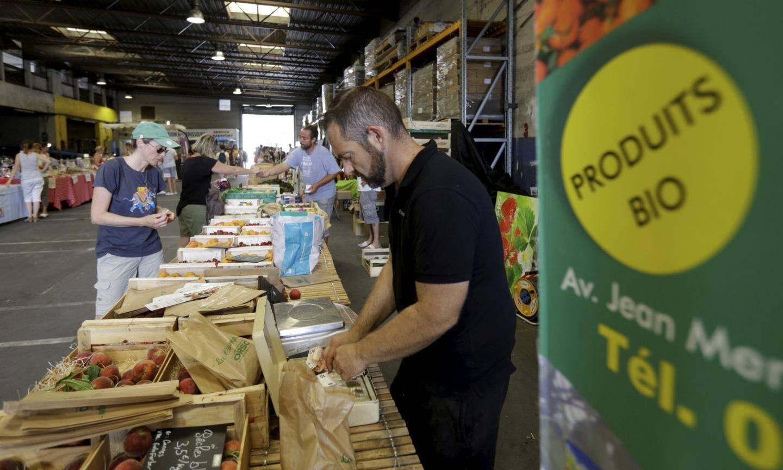 Ce producteur de fruits et légumes locaux, installé à Mandelieu, a attiré du monde, ce samedi, dans le hangar de Nice-Matin, d'où partent d'ordinaire les camions remplis de journaux.