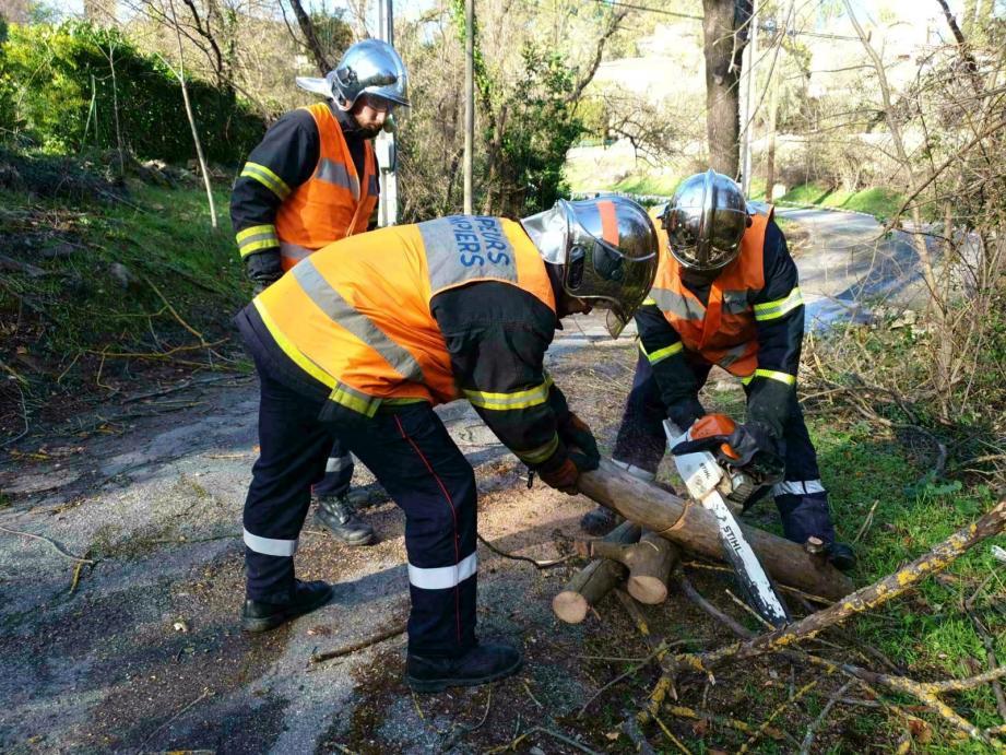 Les pompiers ont été sollicités par plus de 1 500 appels hier, tous types d'interventions confondus. Nombre d'entre elles les ont menés à des chutes d'arbres ou de tuiles, de Saint-Isidore à Roquefort-les-Pins.
