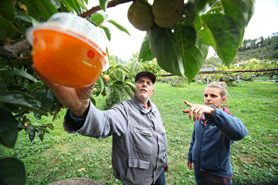 Pierre Trucco reçoit régulièrement la visite d'un conseiller technique d'AgribioVar sur son domaine à Solliès-Toucas.