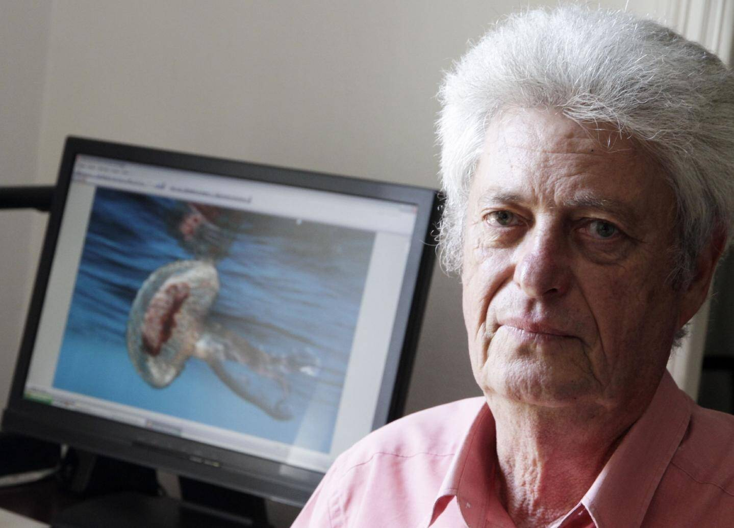Patrice Bernard suit à la trace les méduses sur nos côtes grâce au réseau de surveillance qu'il a mis en place dès 1981.(Photo Grégoire Albertini)