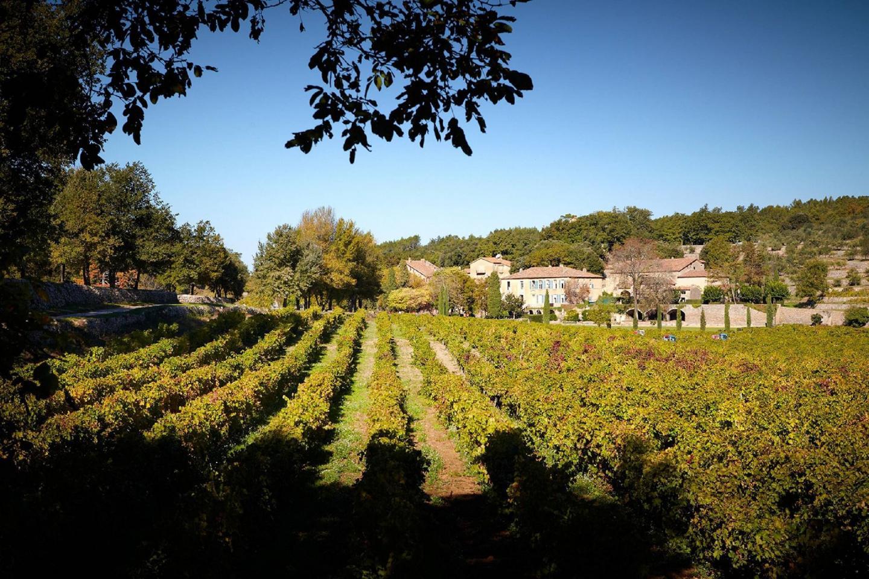 Miraval compte 40 hectares de vignes qui donnent 150 000 bouteilles annuelles dans les trois couleurs. Pour le packaging du rosé Pink Floyd de Miraval, Brad et Angelina ont voulu une esthétique plus soignée.