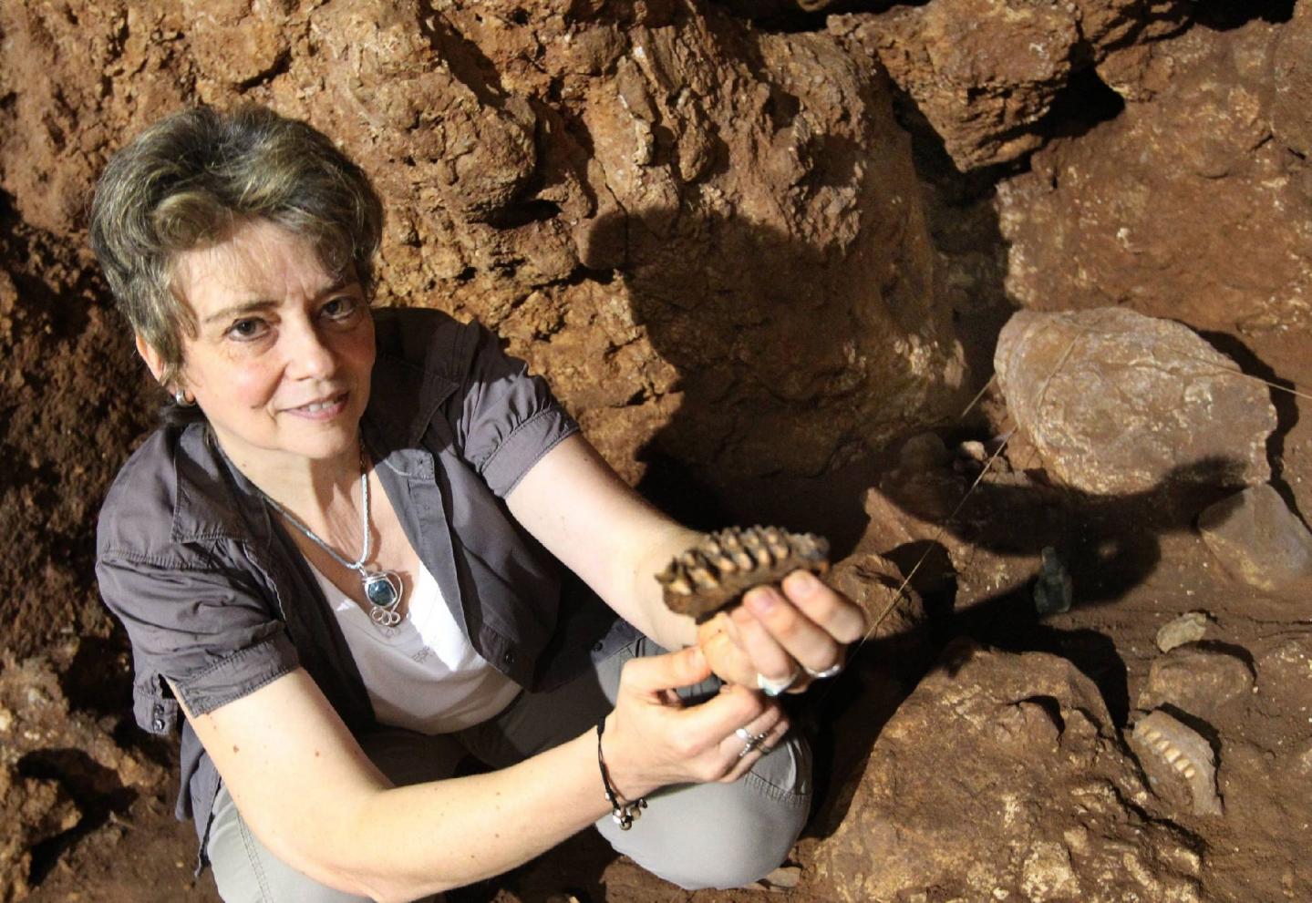 Durant tout l'été, entre juillet et août, plus de cinquante étudiants chercheurs venus du monde entier se sont succédé dans la grotte du Lazaret, contribuant à la découverte de milliers de pièces lithiques et d'ossements, à l'image de cette manidibule de daim, brandie, ci-dessous, par Patricia Valensi, paléontologue.