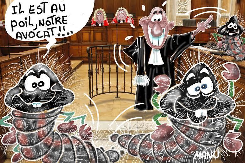 Comme le veut le protocole, le tribunal désigna en vue du jugement un défenseur aux chenilles, en la personne du brillant avocat, le sieur Caravasquini.