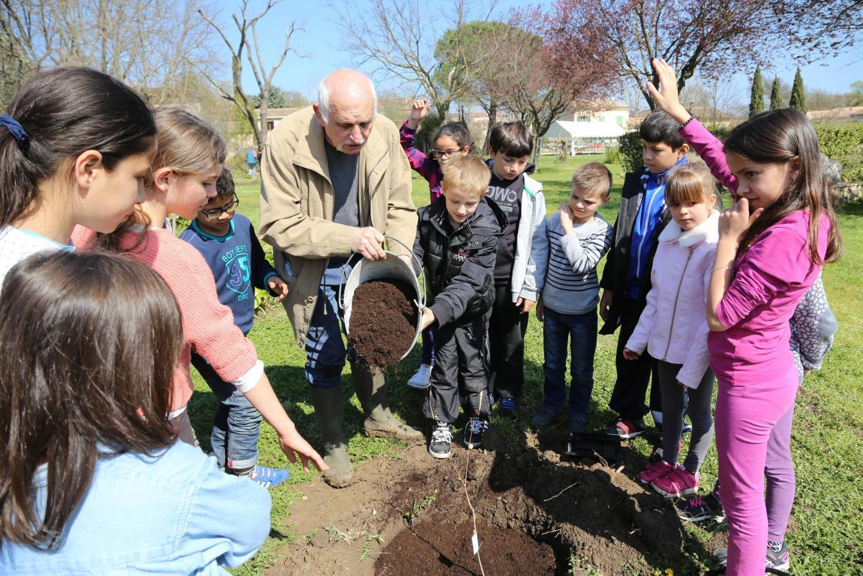 Les élus, le maire en tête, ont donné l'exemple. Puis les CM1/CM2 et les CP, aidés des jardiniers de la Ville, ont planté les dix-neuf premiers arbres. Après ce labeur, un goûter bio leur a été offert.