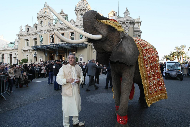 Symbole de prospérité et de bonheur, les éléphants sur la place du Casino ont marqué les esprits.