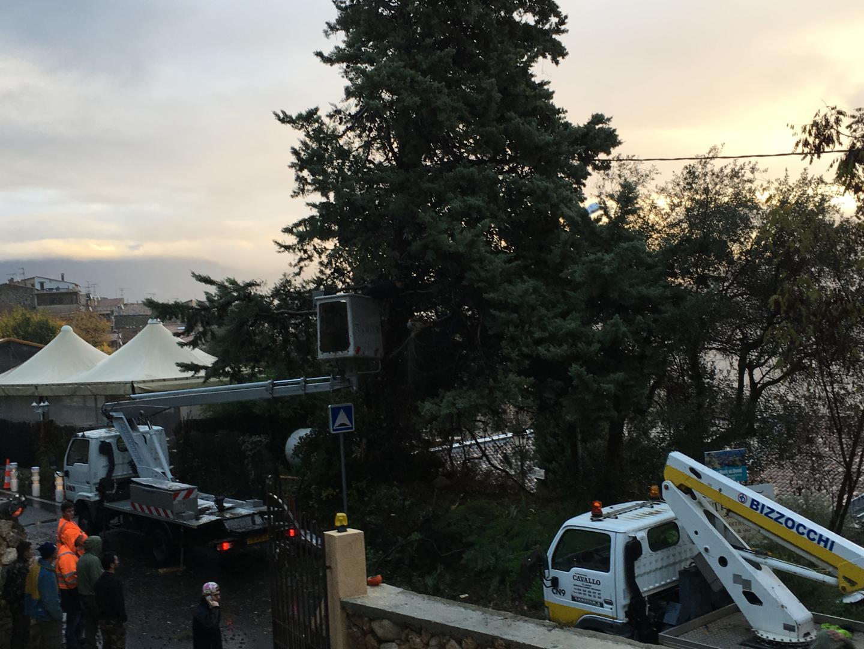Un camion à bras équipé d'une tronçonneuse a été dépêché sur place.
